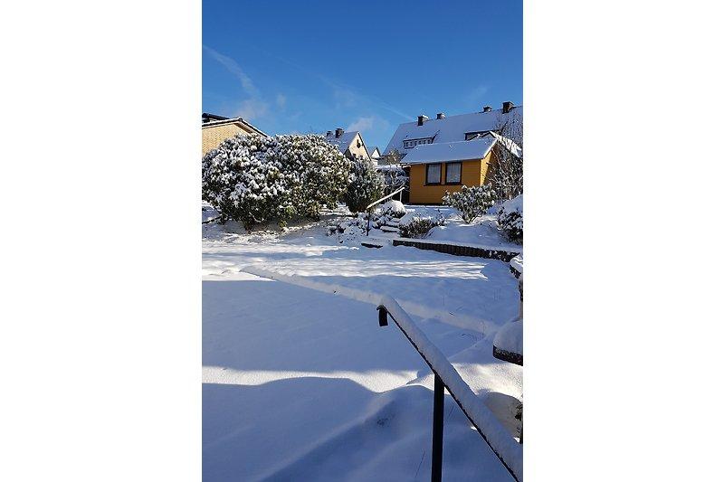 umzäunter Garten im Winter