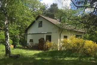 Villa Kunterbunt im Wald, Weinstr.