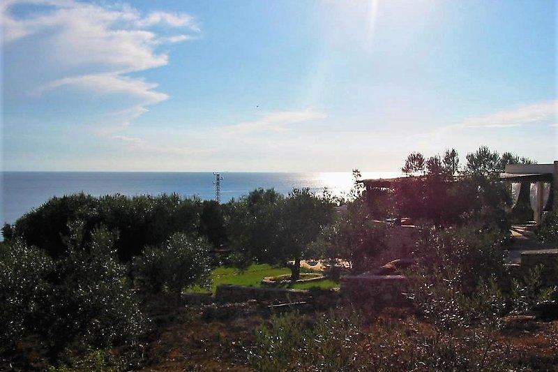 Aussicht von der Villa