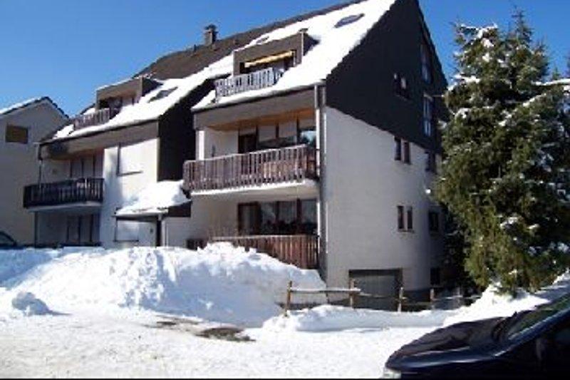 Appartment  Winterberg in Winterberg - immagine 2