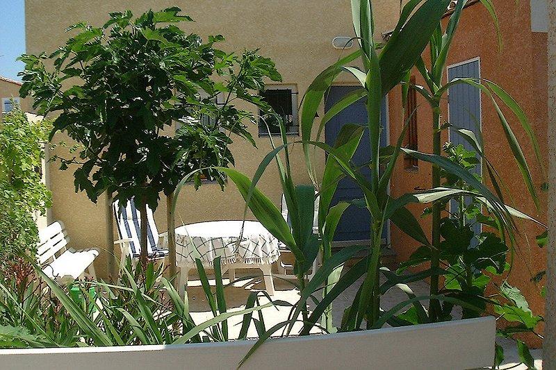 Der 2. Garten mit abgeschlossenem Eingangsbereich