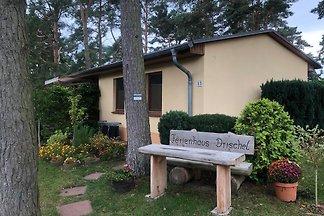 Drischel Ferienhaus mit Kamin