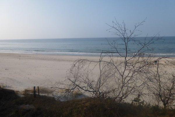 Ferienwohnung 200m zum Strand