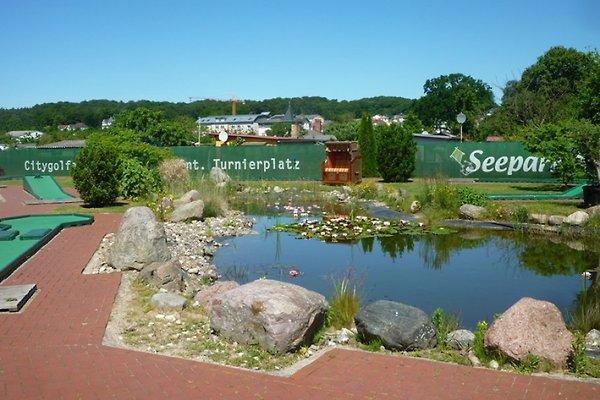 Ferienwohnung Seebrücke  à Sellin - Image 1