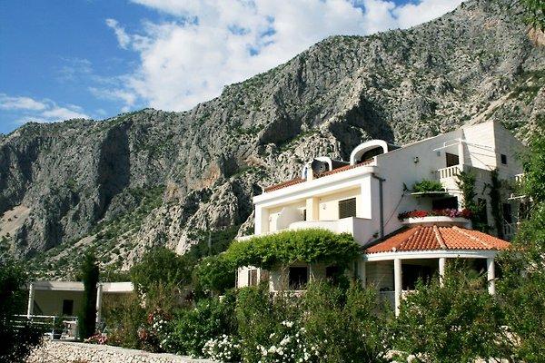 Apartments Villa, Kroatien en Drasnice - imágen 1