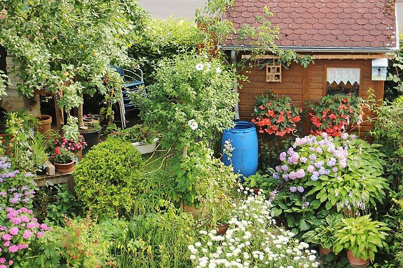 Gartenblick aus dem Wohnzimmer