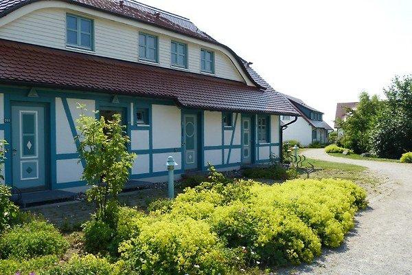 Ferienhaus mit 5 WEu. 20Betten à Dranske - Image 1