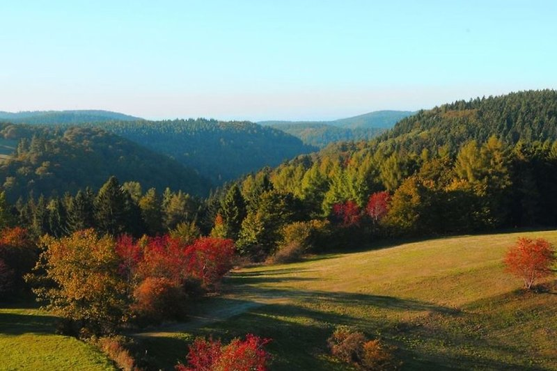 Hexenblick im Herbst