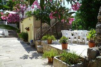 Villa Grace****