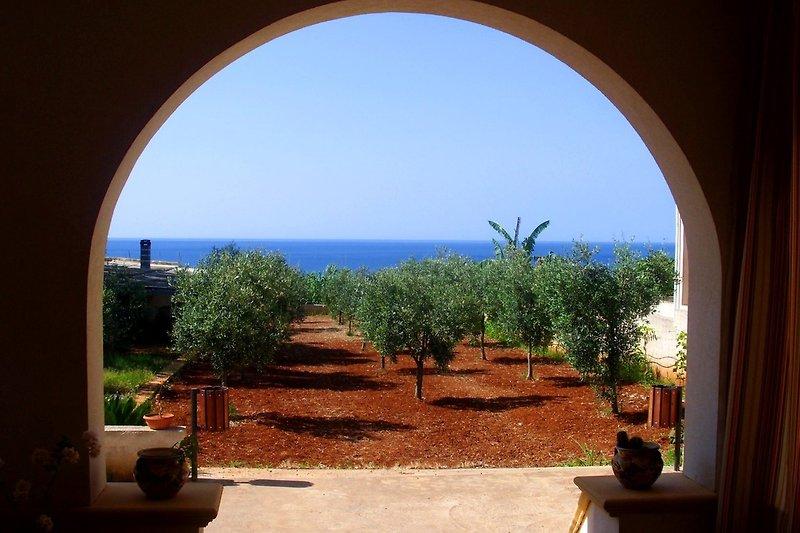 Ferienhaus Selinunte mit Garten und Meerblick