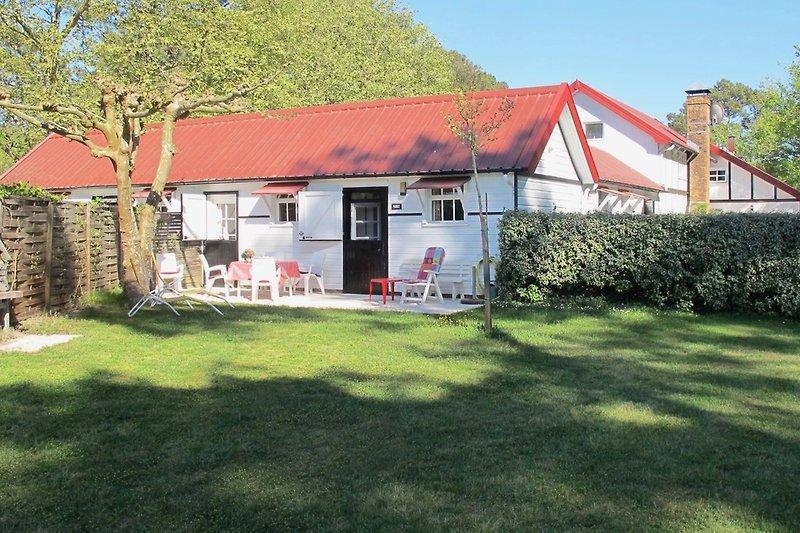 Maison Camélia