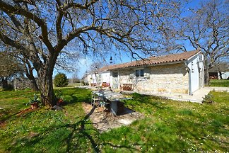 Ein schönes und entspannendes Haus mit Pool in der Umgebung des istrischen Juwel Rovinj. Das Haus verfügt über einen großen Garten mit Parkplätzen, Grill und 2 Terrassen