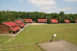 Ferienhaus Heino HNO-1522