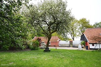 Holiday Farmhouse Sellingen SEL-762-D