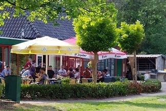 Gruppenunterkunft Heeswijk-Dinther...