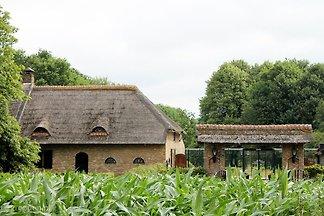Gruppenunterkunft Baarle-nassau BRN-1764