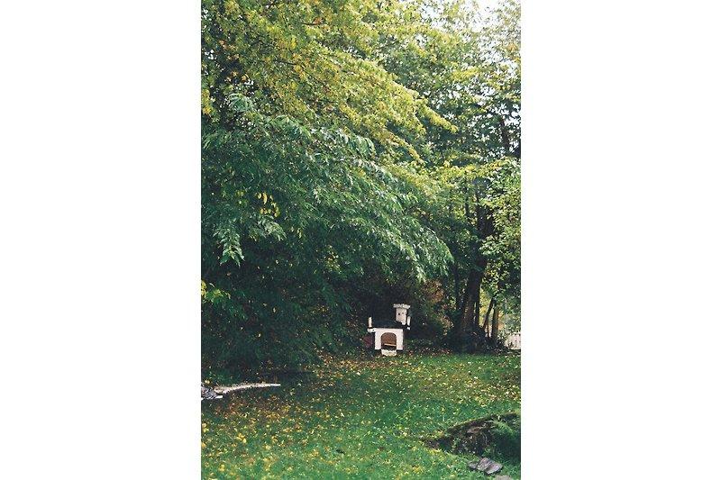 Gartenbereich (Ausschnitt)
