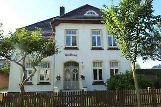 Fewo Seestern - Villa Waldtraut