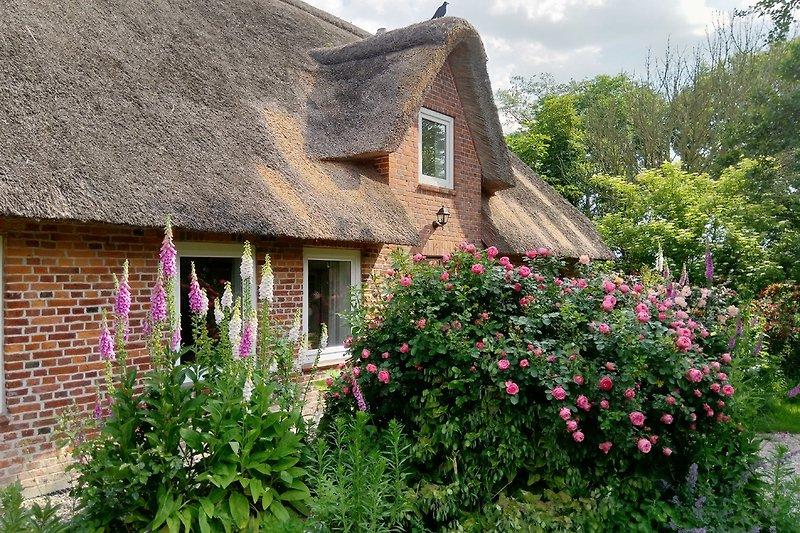 Ihr Ferienhaus inmitten üppiger Vegetation