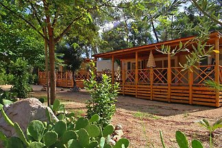 Caravanpark Soline, Biograd