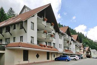 Holiday flats Residenz Kupferkanne, Todtmoos