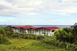 Doppelhaushälften Ponta Balleia, São João