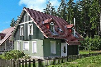 Ferienhäuser im Tannenpark, Tanne