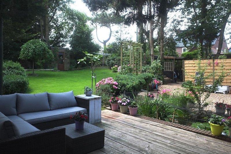 Terrasse / Gartenhaus