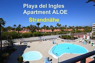 Apartment ALOE
