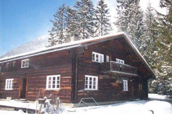 Haus in Berwang in Berwang - Bild 1