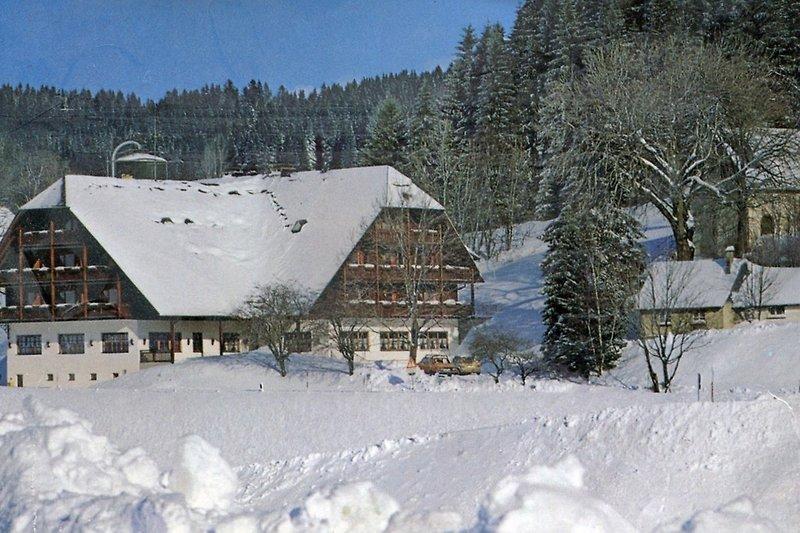 Winter im Jostal