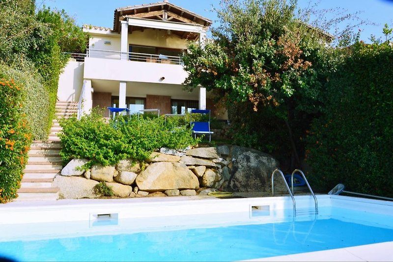 Villa Sofia and its pool