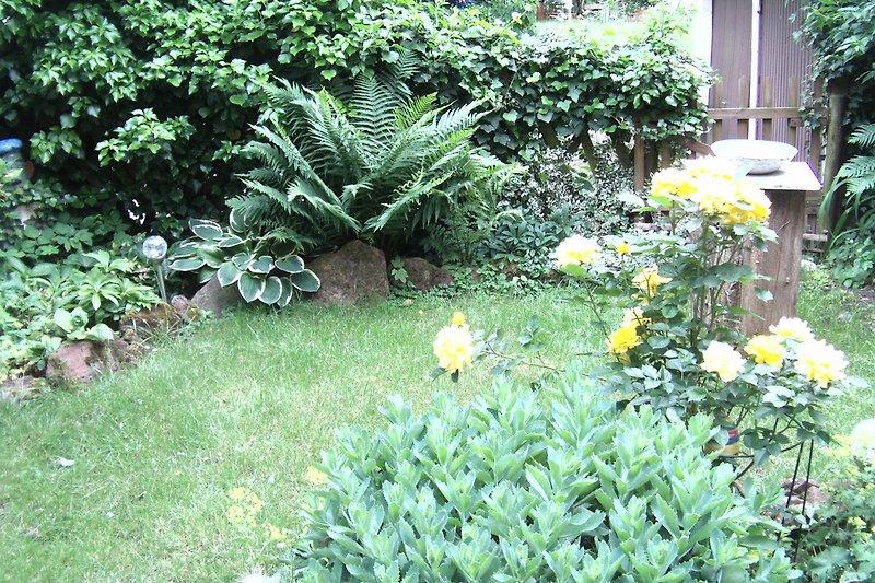 Garten - ©J.Monter