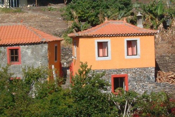 Madeira-Haus Antiga in Calheta - Bild 1