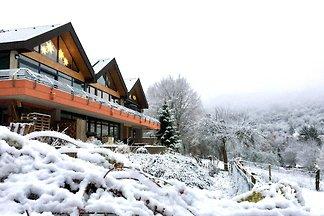 Wildnishaus Nationalpark Eifel