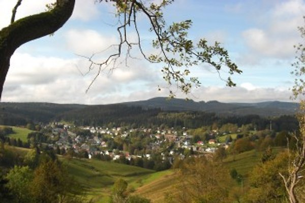 Gemütlich u. günstig à Stützerbach - Image 1