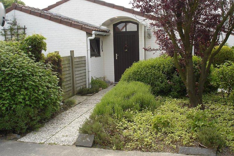 Vorgarten mit Hauseingang