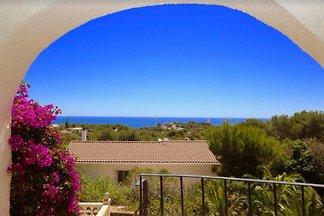 Villa Hibiscus - vue mer