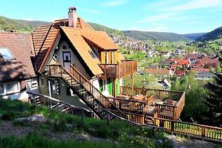 FeWo/Haus & Grillhütte, Schwarzwald
