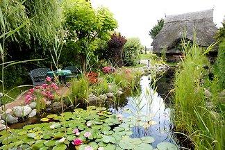 Garten - Oase