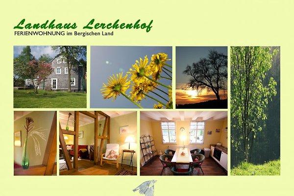 Landhaus Lerchenhof * * * * in Wermelskirchen - immagine 1