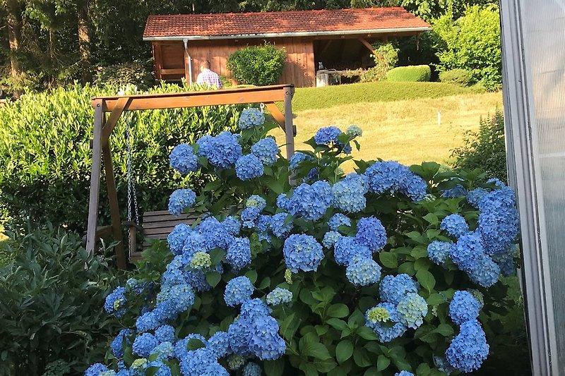toller Garten