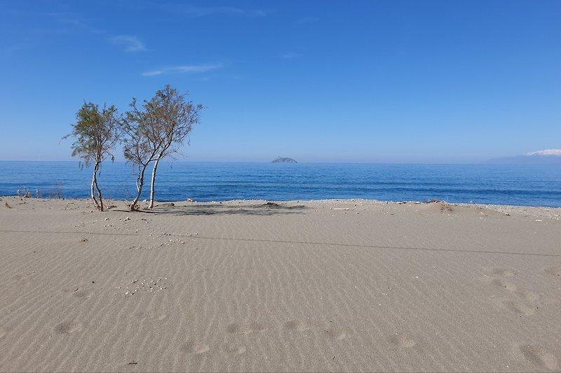 In nur 100 Metern am Strand von Kalamaki