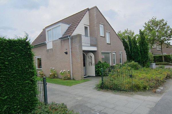 Le Rivage 9 in Nieuwvliet Bad - Bild 1