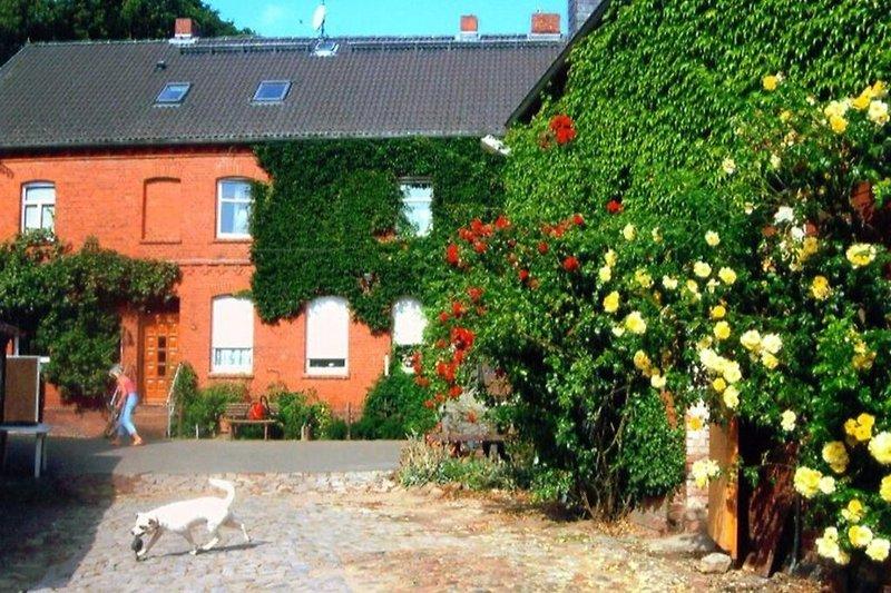 Ferienwohnung auf dem Bauernhof an der Elbe in Cumlosen direkt am Elbdeich