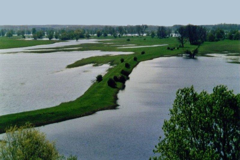 Ferienhaus an der Elbe in Wootz die einzigartige Landschaft des Elbufers (Umgebungsbild)