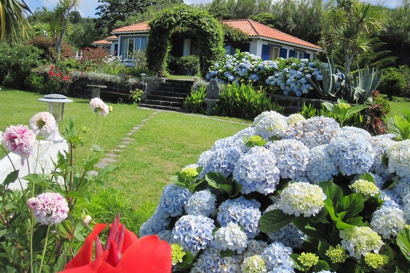 Haus mit Garten (Teilansicht)
