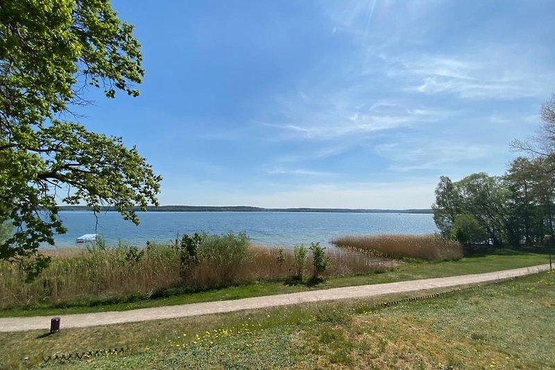 Blick auf den See und Radweg