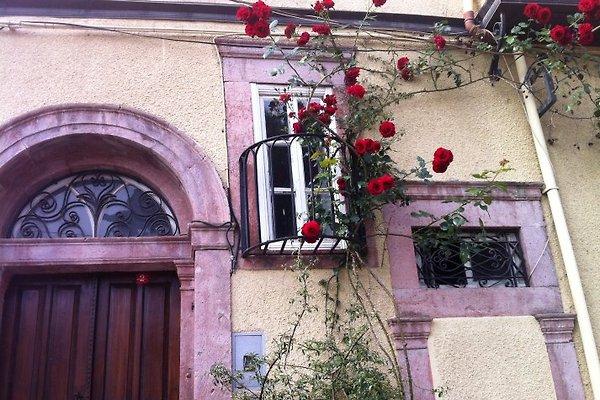 Haus an der Ägäis à Ayvalik - Image 1