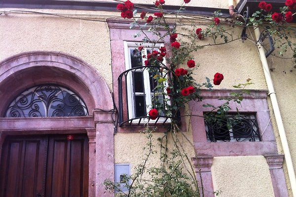 Haus an der Ägäis en Ayvalik - imágen 1